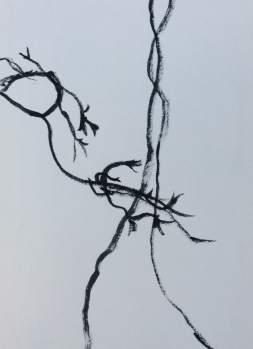 Seaweed - old marker
