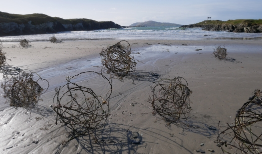 Silent Demonstration, 'Tumbleweed' on Cow Strand
